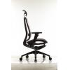 Ортопедическое  офисное кресло DUOREST  Mesh # 1